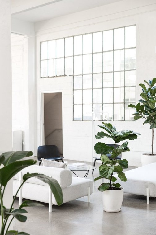 the-everlane-office-2